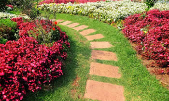 Landscaping in Cherry Hill STATE% Landscaping Services in  Cherry Hill STATE% Landscapers in  Cherry Hill STATE%