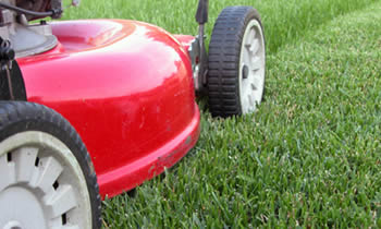 Lawn Care in Cherry Hill NJ Lawn Care Services in Cherry Hill NJ Quality Lawn Care in Cherry Hill NJ